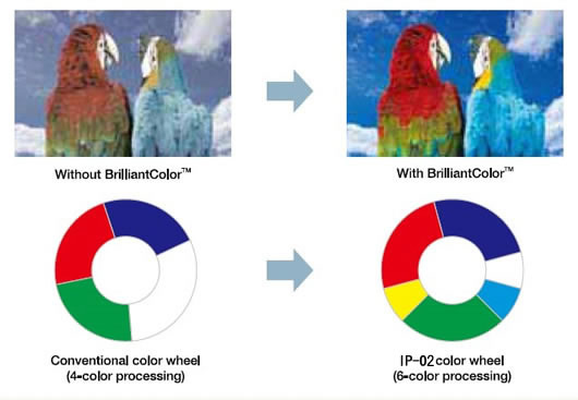 Highest color reproducibility